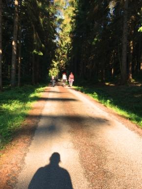 Waldweg und Schattenselfie