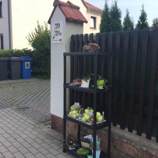 Tauschregal Wilsdorf