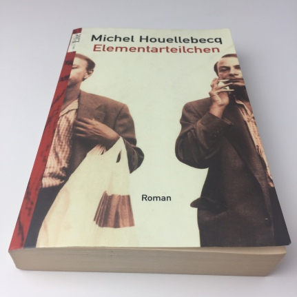 Michel Houellebecq – Elementarteilchen